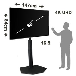 NEC E657Q 65 4K UHD LED TV - A - for rent at Digital Azul
